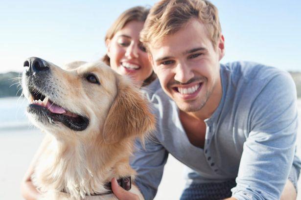 Se hai un bel cane con te il rimorchio è sicuramente più facile